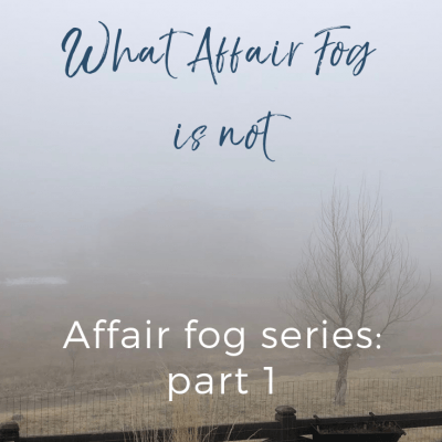 Affair Fog-What It Is Not